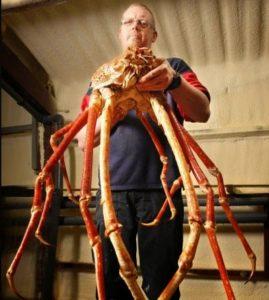 crabzilla-curiosita-pesci-mare-isda-travel-blog